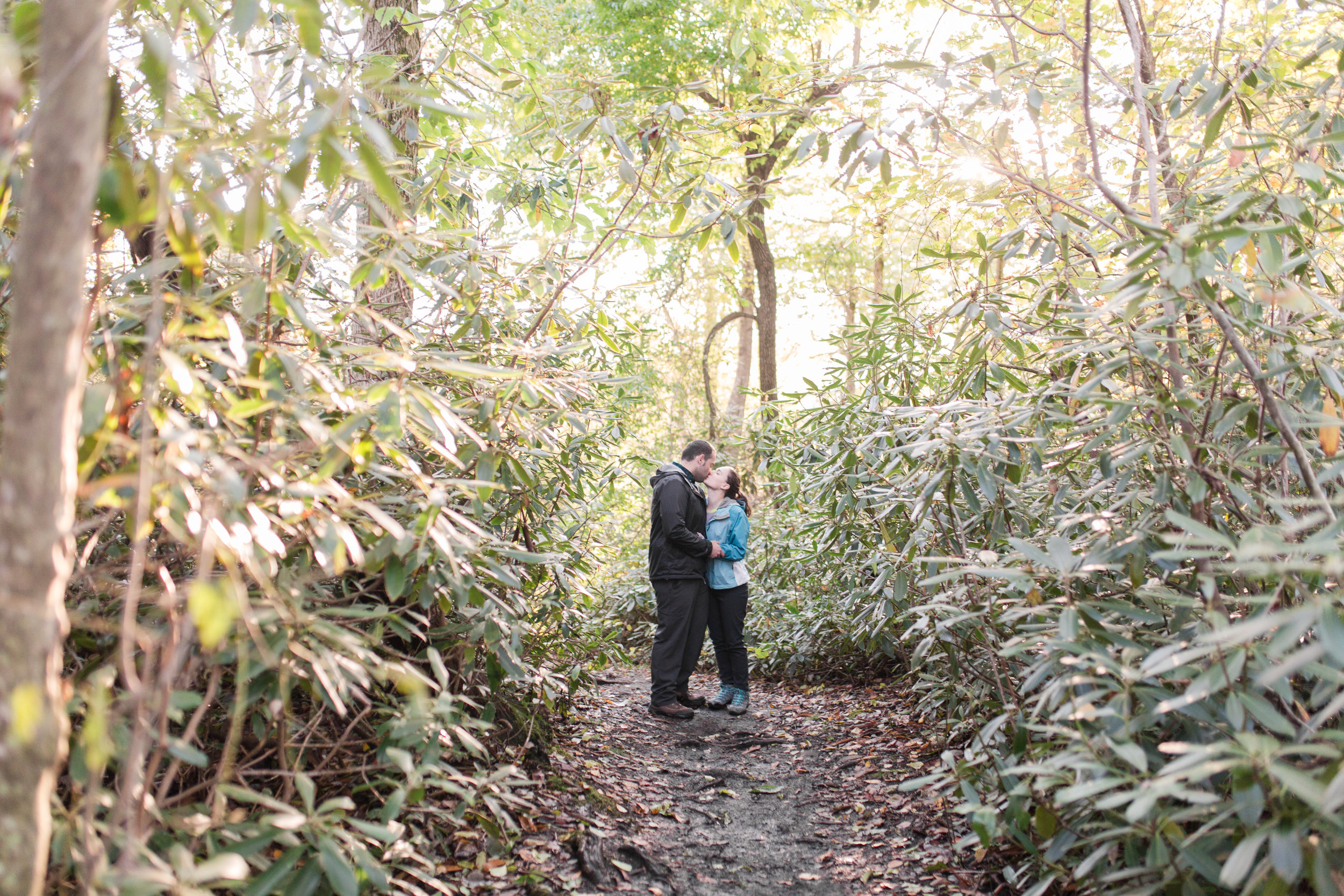 Conrad and Nicole, wv proposal lindy point blackwater falls-30.jpg