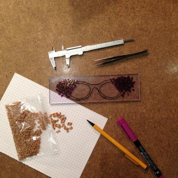 Custom prairie wheat eyeglasses