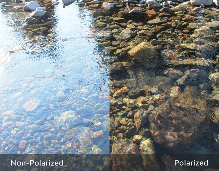 Polarized+vs+Non-polarized+Lenses.jpg
