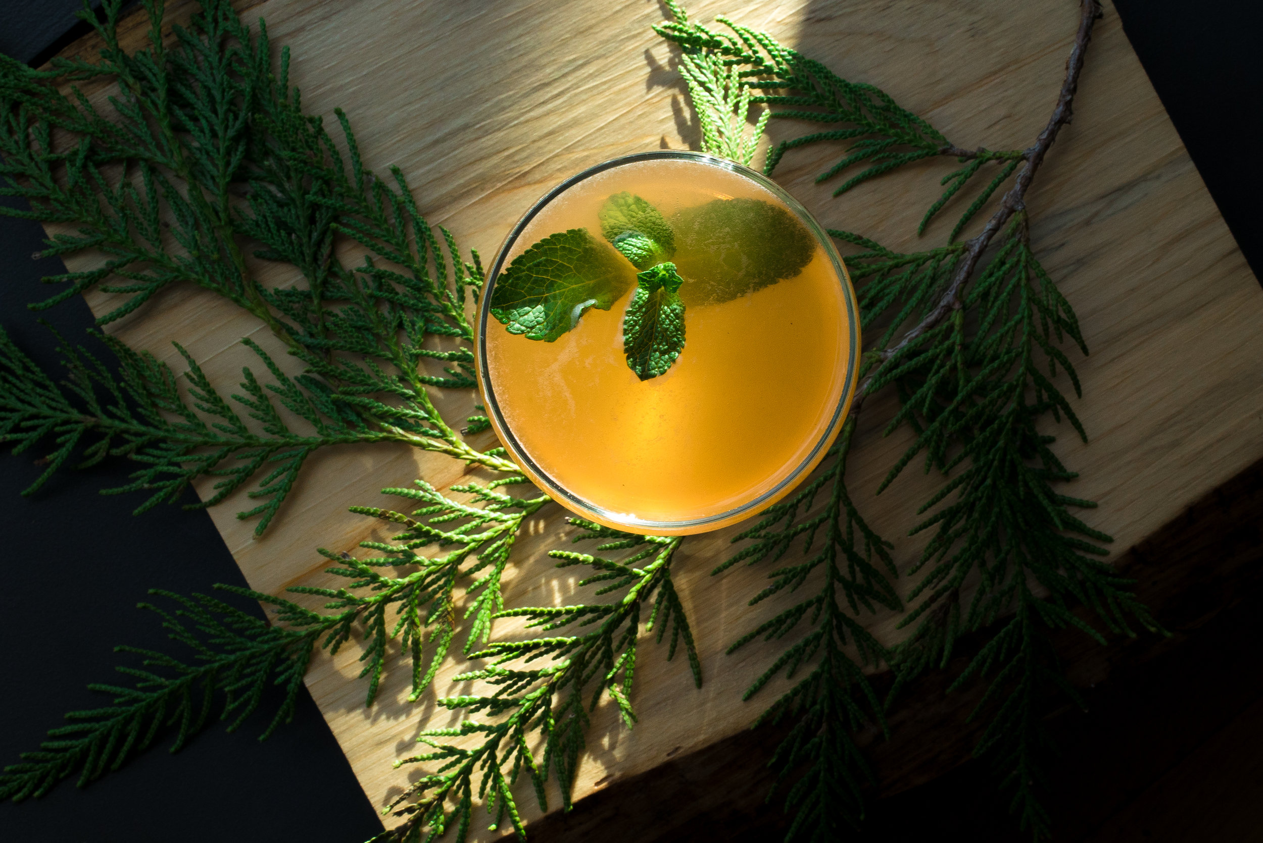 3 must-try tequila cocktails for the holidays | Parisima Baha