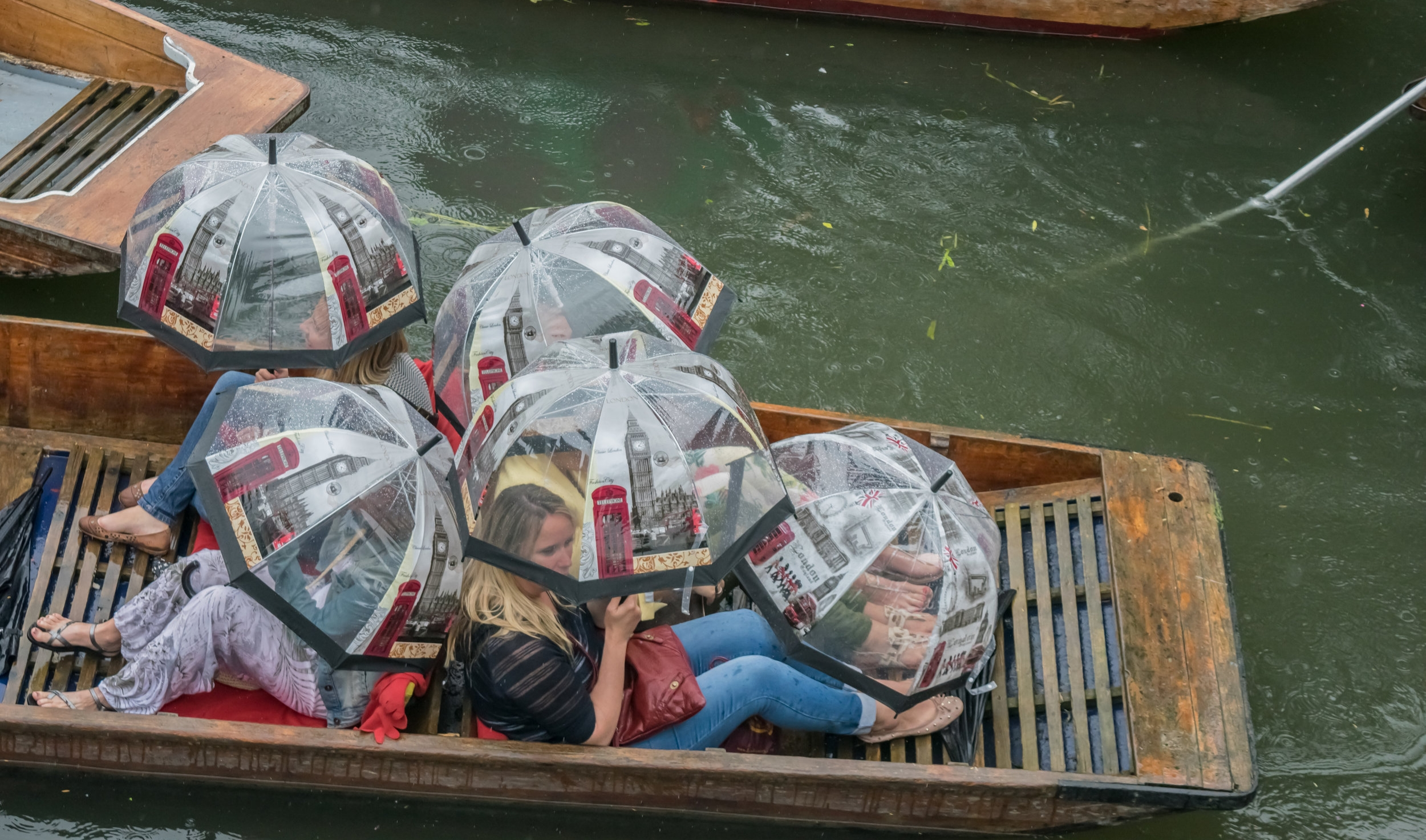 punts with brollies.jpg