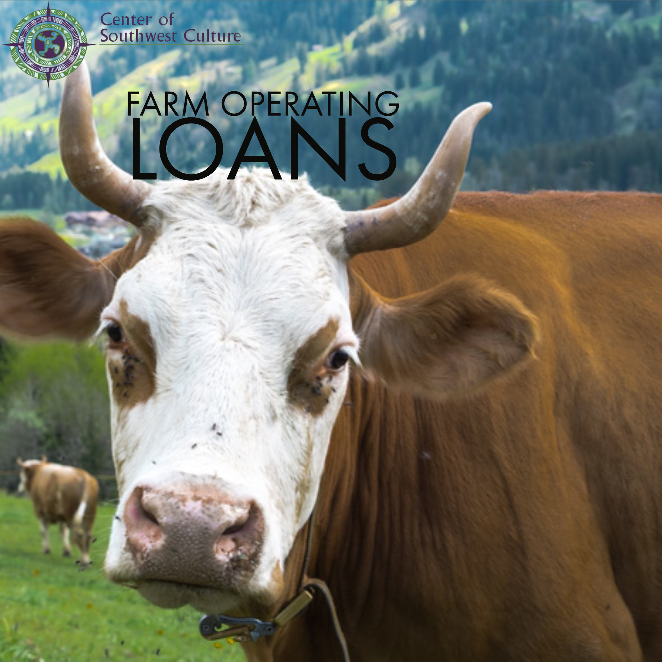 Farm Operating Loans - FSA's Direct farms operating loans are a valuable resource to start, maintain and strengthen a farm or ranch. PDF of information can be found here.