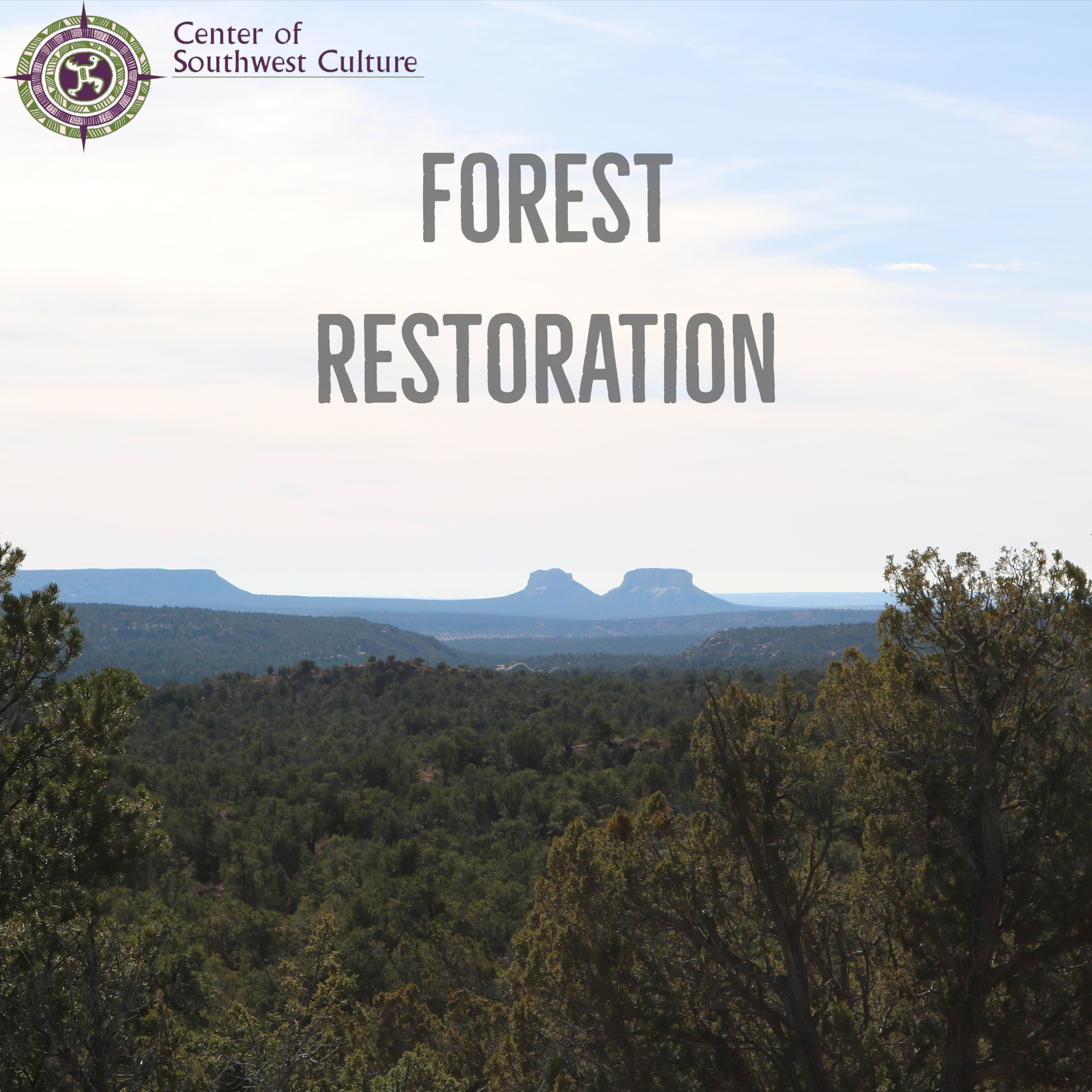 Emergency Forest Restoration Program (EFRP) - The Emergency Forest Restoration Program (EFRP) provides payments to eligible owners of nonindustrial private forest land in order to carry out emergency measures to restore land damage by a natural disaster.PDF information can be found here