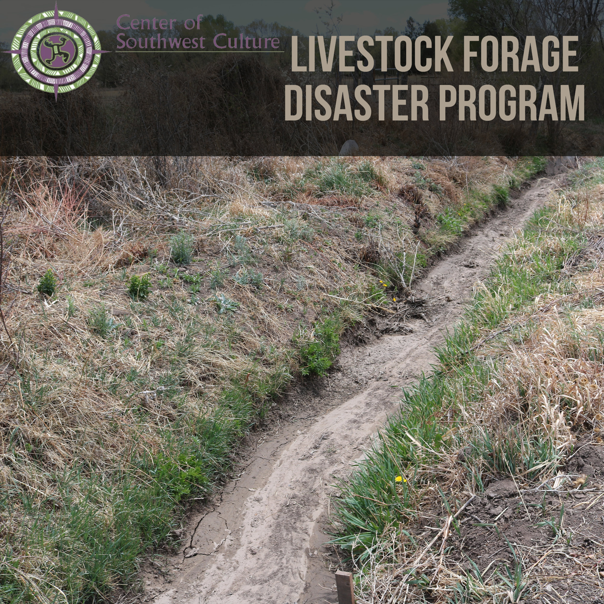 Livestock Forage Disaster Program - The Livestock Forage Disaster Program provides compensation to eligible livestock producers who have suffered grazing losses for covered livestock on land that is native or improved pastureland with permanent vegetative cover or is planted specifically for grazing. PDF of information can be found here.