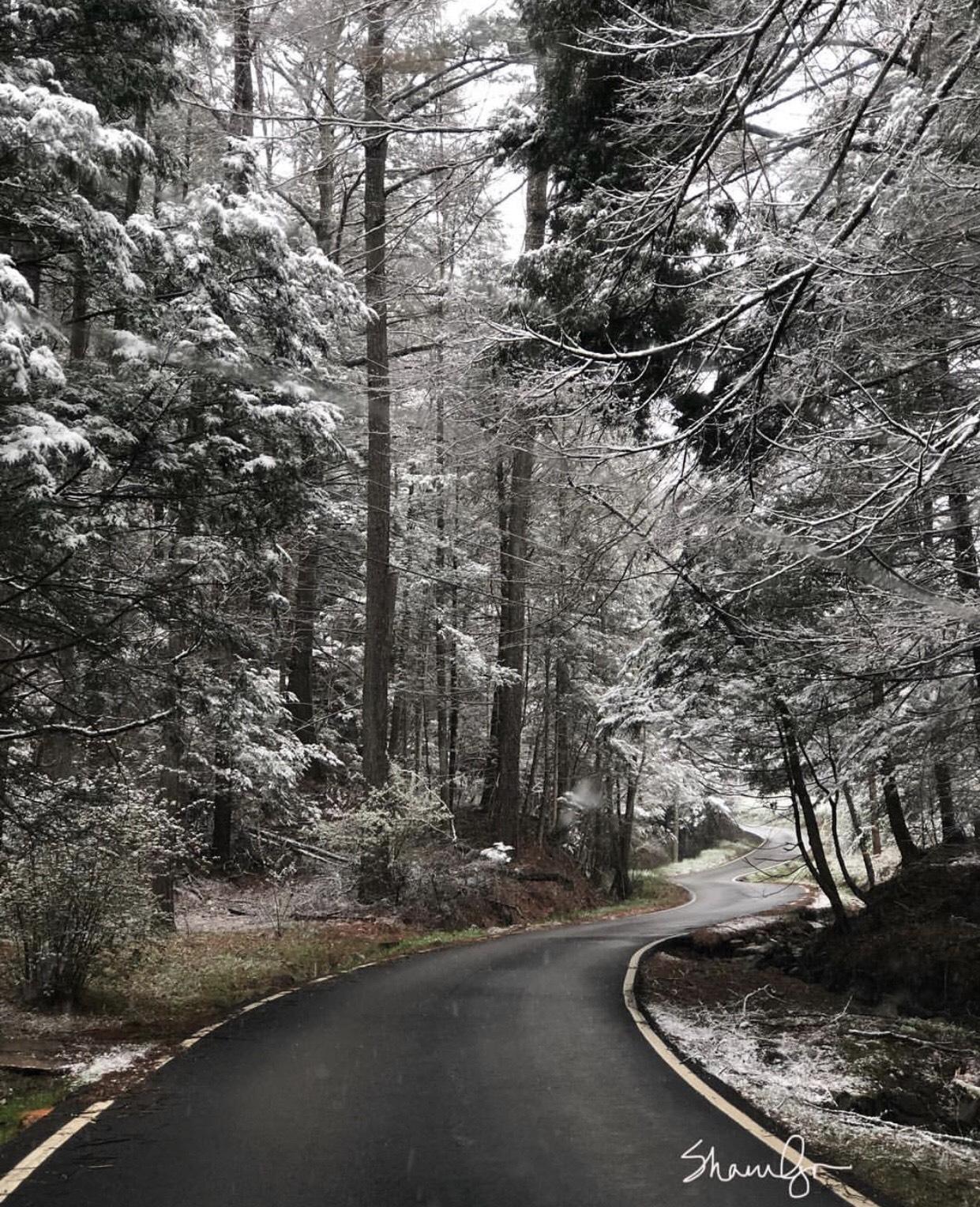 Scenic Route (1).jpg