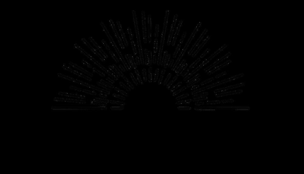 salon-lucid-logo-600dpi-black-transparent_orig.png