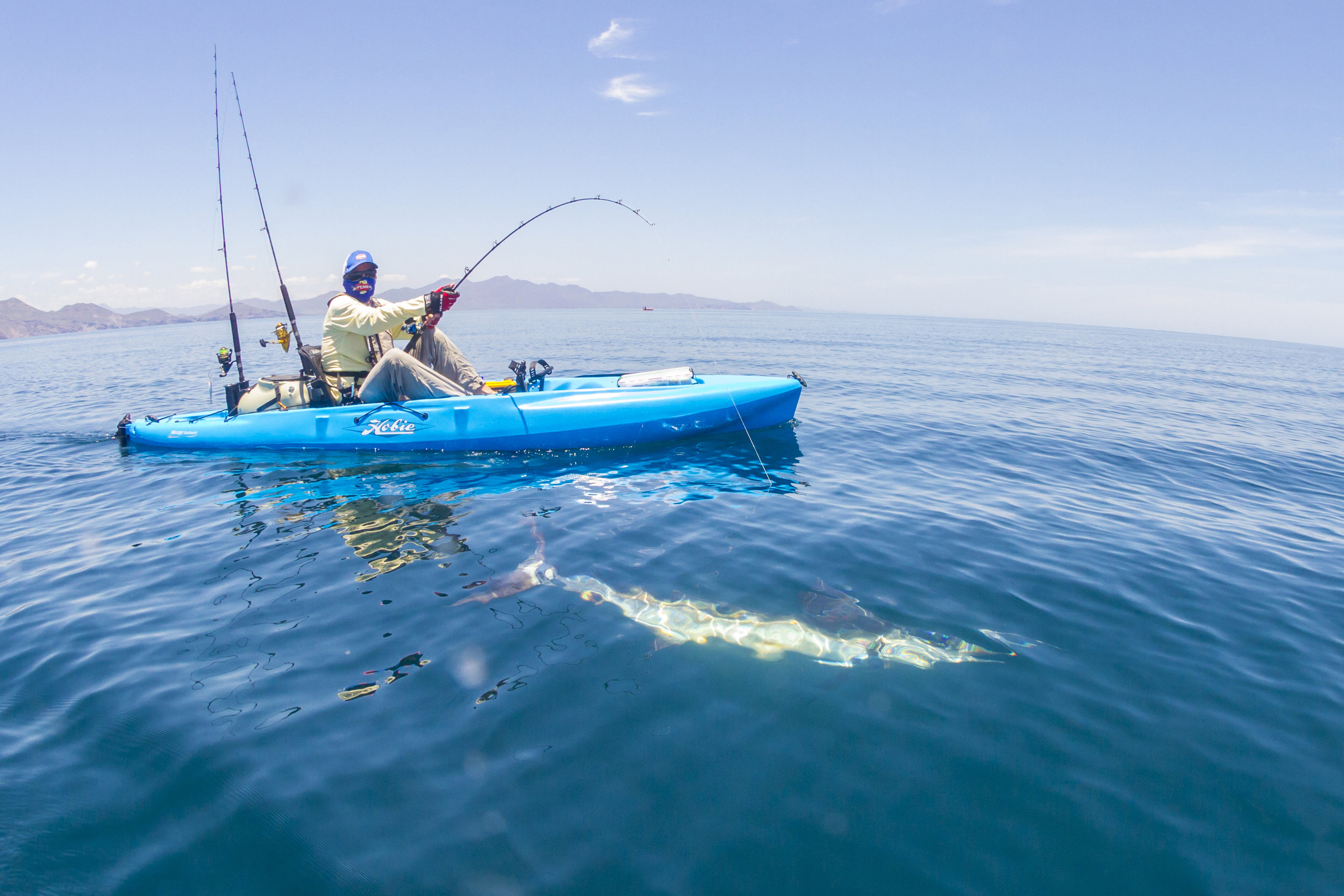 Outback_action_fishing_marlin_ocean_blue_tow_4477_full.jpg