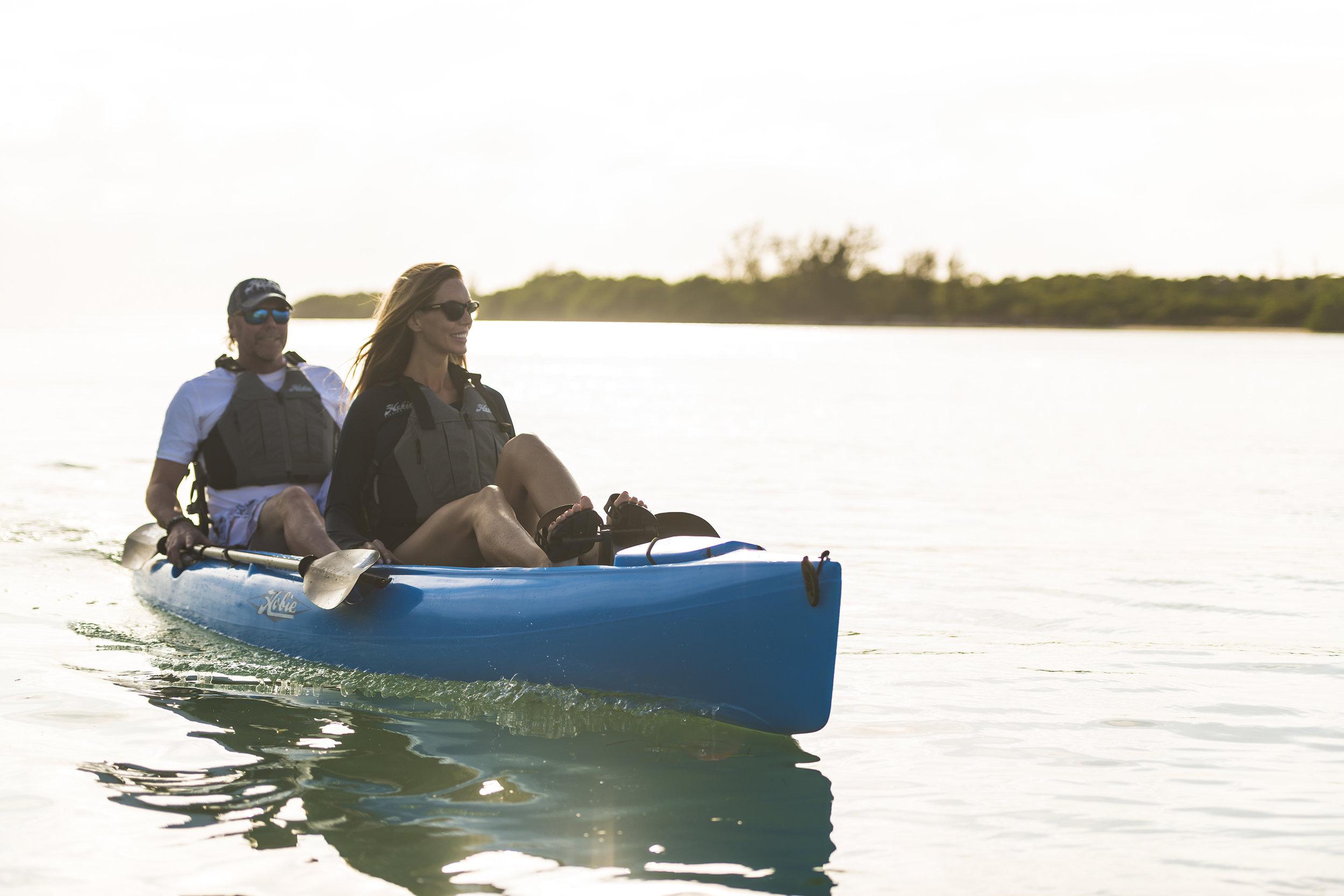 Oasis-action-blue-Florida-Root-backlit-lg.jpg