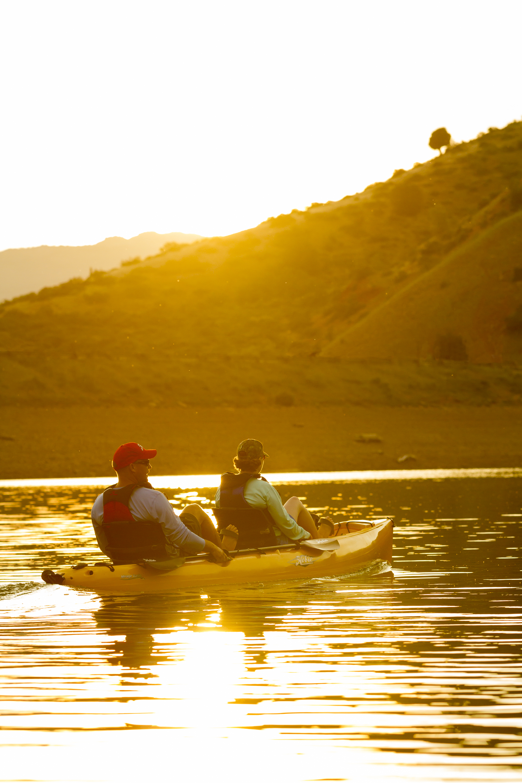 Oasis-action-Culley-Ester-causey-lake-yellow-sunburst-lg.jpg