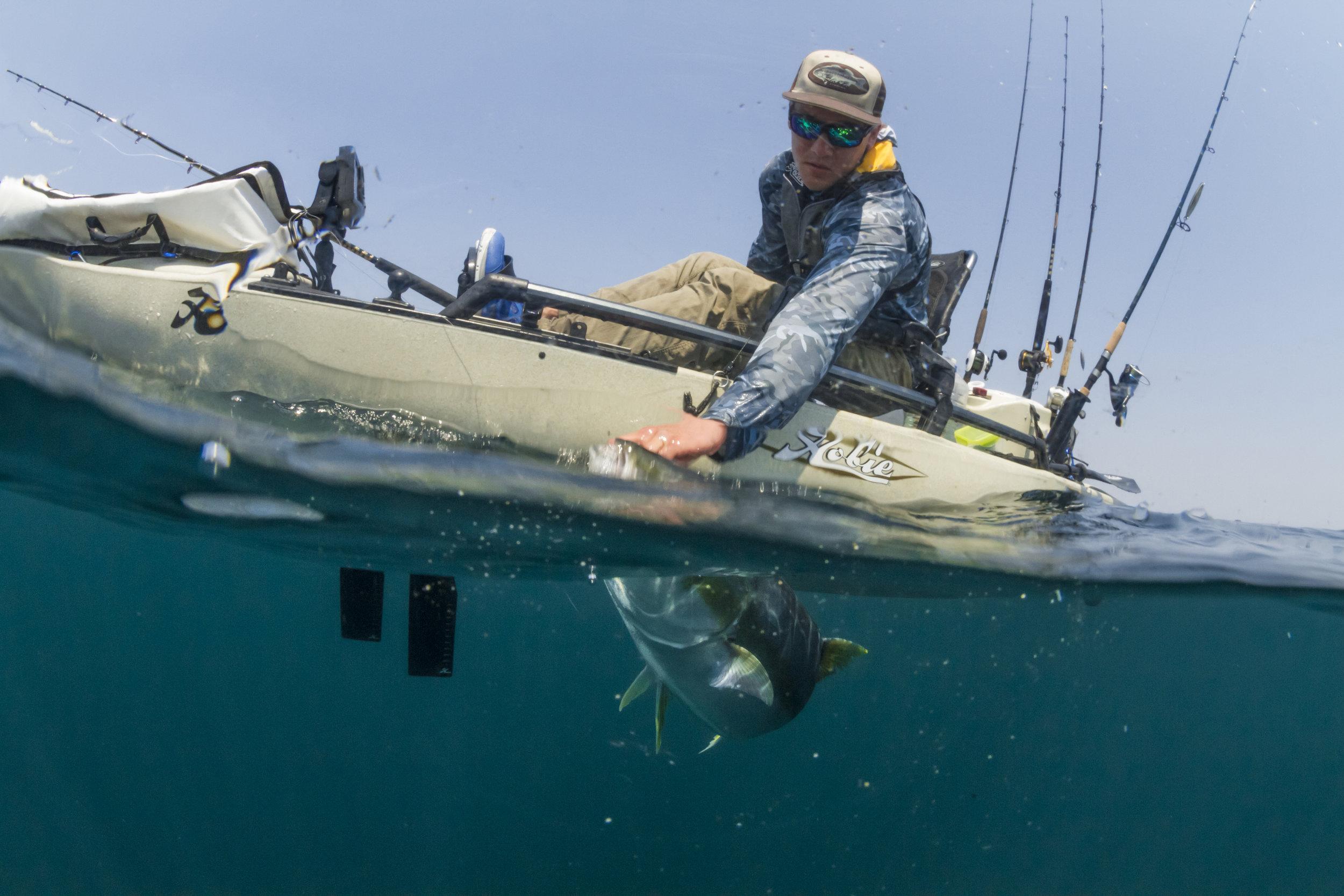 ProAngler14-action-fishing-overUnder-MD180-yellowtail-4371-full.jpg