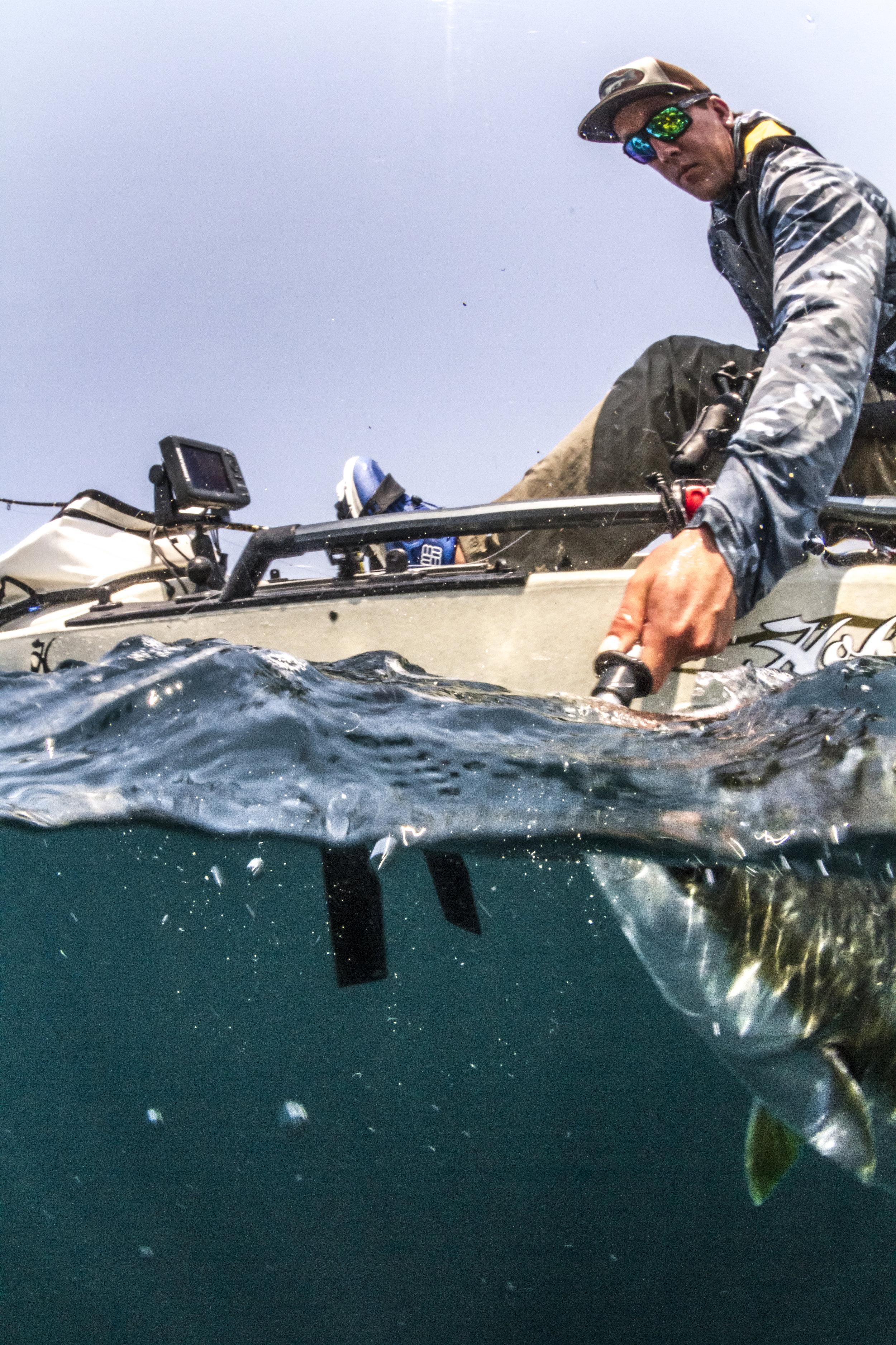 ProAngler14-action-fishing-overUnder-MD180-yellowtail-4408-full.jpg