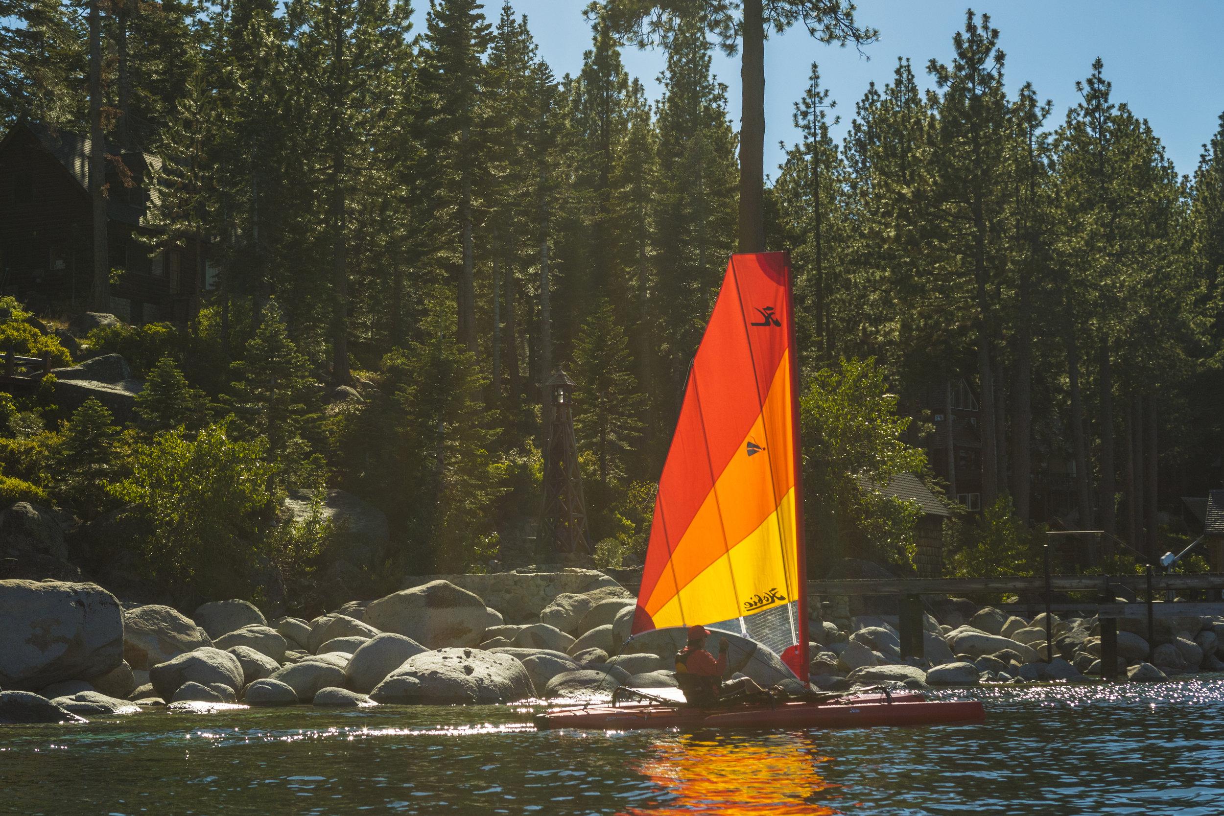 AdventureIsland_action_Tahoe_Red_forest_2809_full.jpg