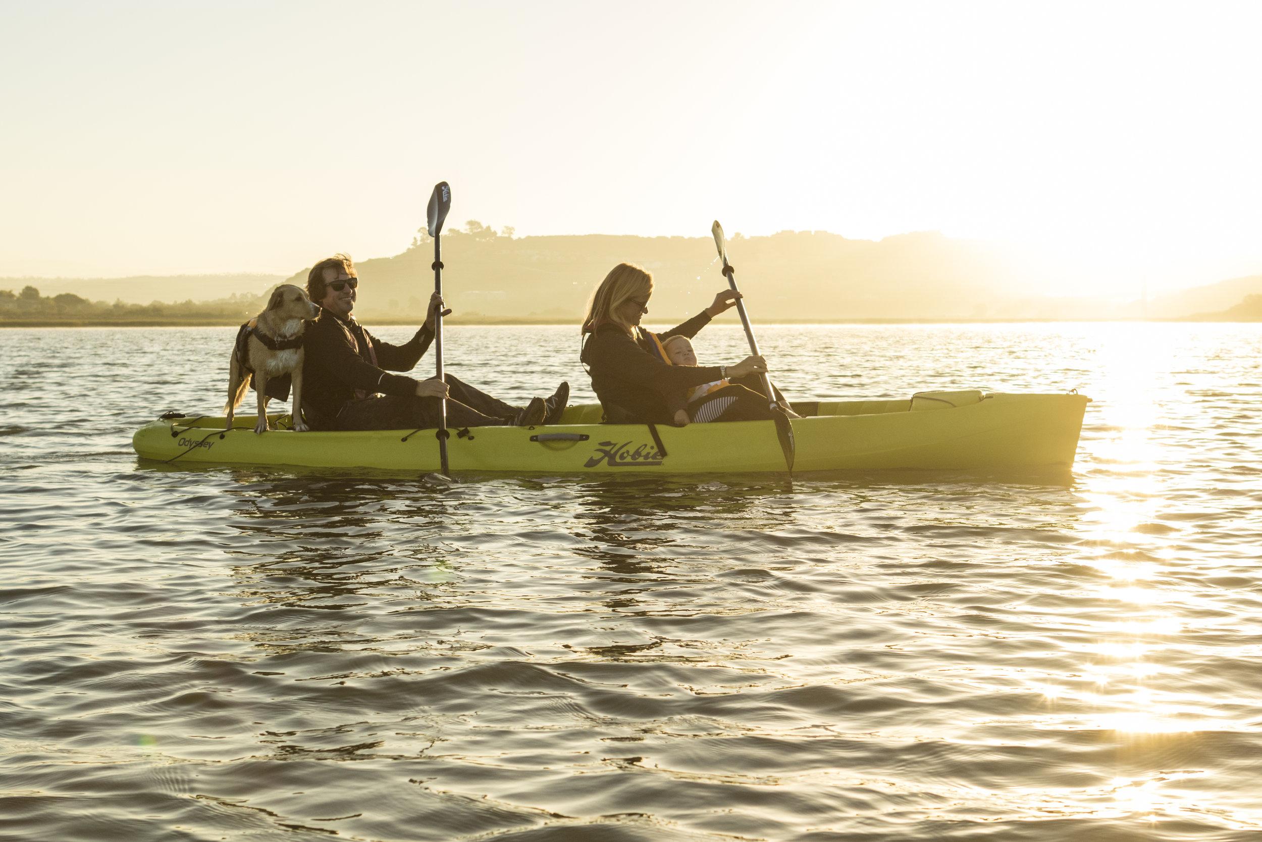 Odyssey_action_family_seagrass_lagoon_jim_dog_sunrise.jpg