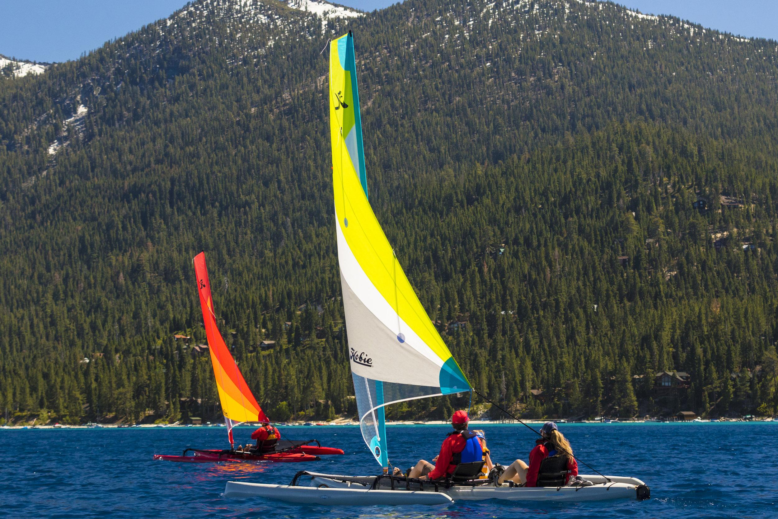 Islands_action_Tahoe_red_dune_snowyForest_2453_full.jpg