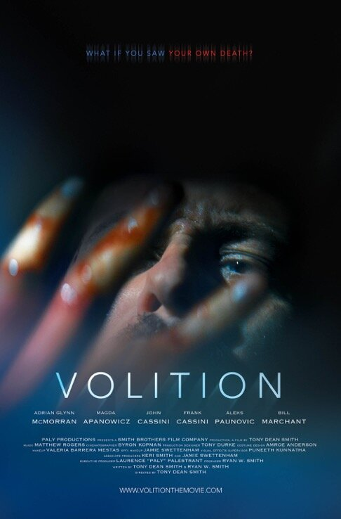 Volition poster.jpg