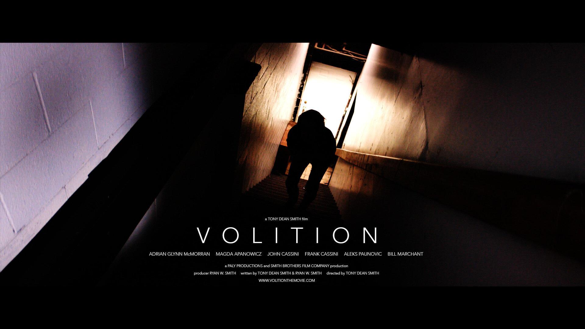 Volition 2.jpg