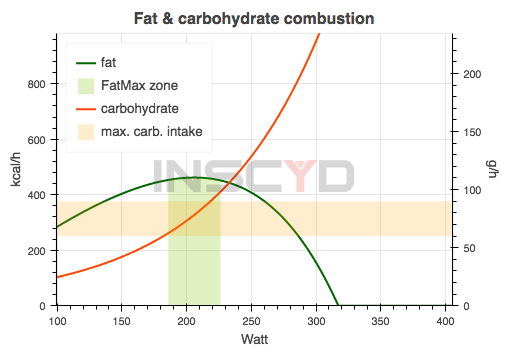 Fat & Carbohydrate Combustion.png