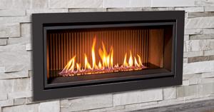 enviro gas fireplace.jpg
