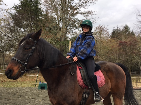 FOOLS INTEGRITY (JACK)    Jack is a tall quarterhorse, standing at 16.1 hands (a hand equals 4 inches). His first job was as a 3-day eventer with the teen who used to own him. Now he is a sweet and very well-trained lesson horse for our more advanced riders.