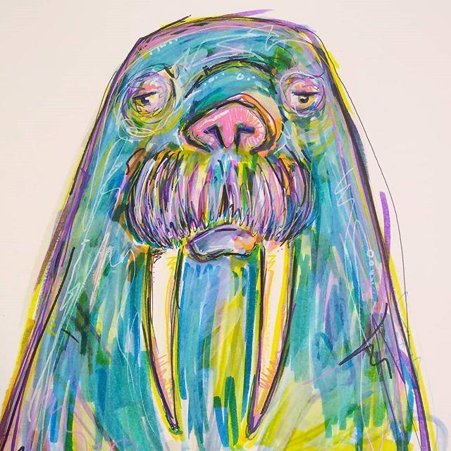 Walrus.  #doodle #drawing #walrus #art #artist #scribbles #colors #walrusdrawing #walrusart #markerspencilsandpensohmy #pnwartist