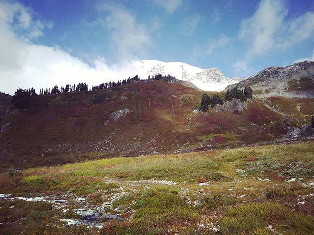 Last minute hike up at paradise.  #paradise #paradiserainier #mtrainiernationalpark #mtrainier #hiking #pnw #trails