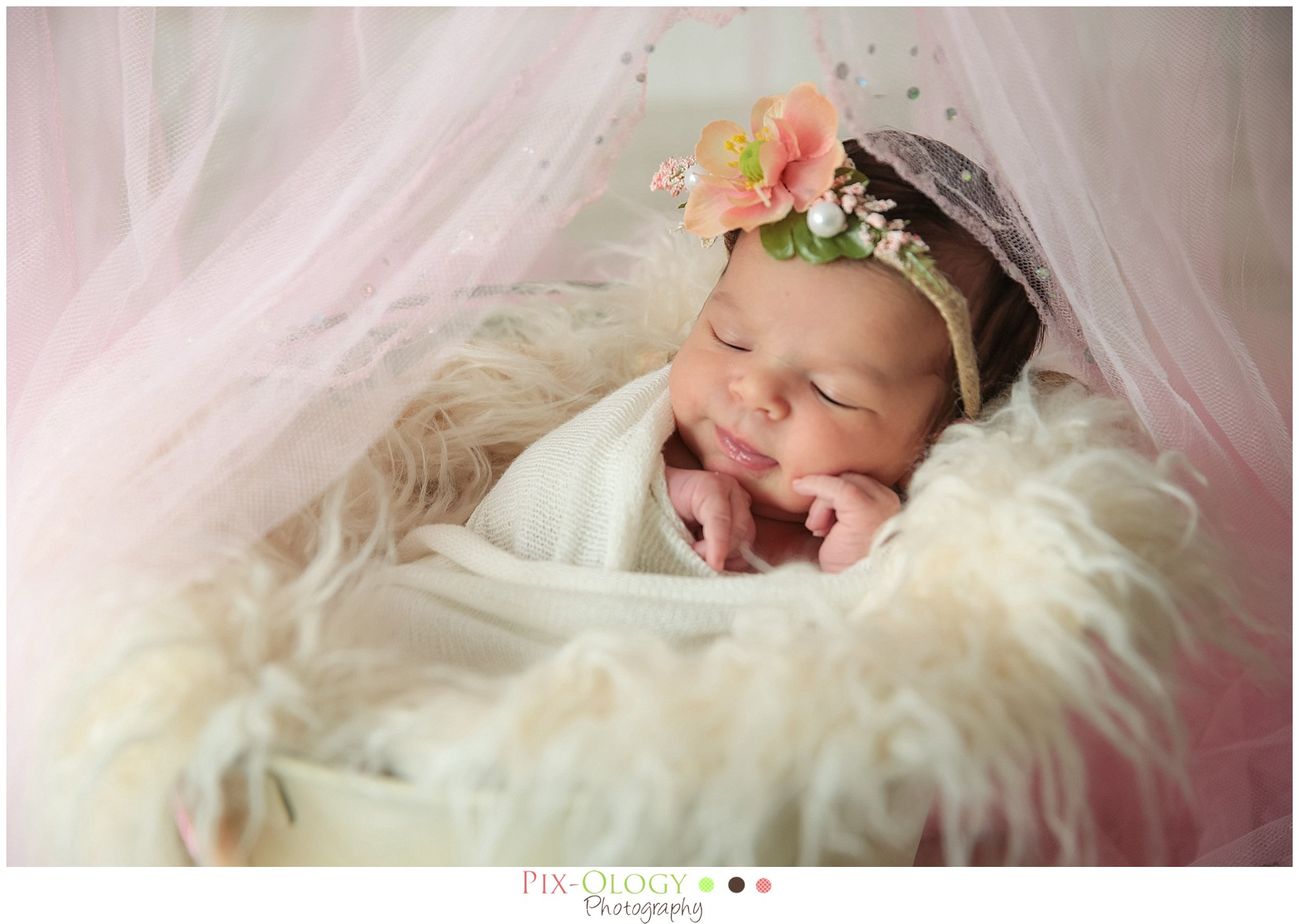 Lehigh Valley Newborn Photography