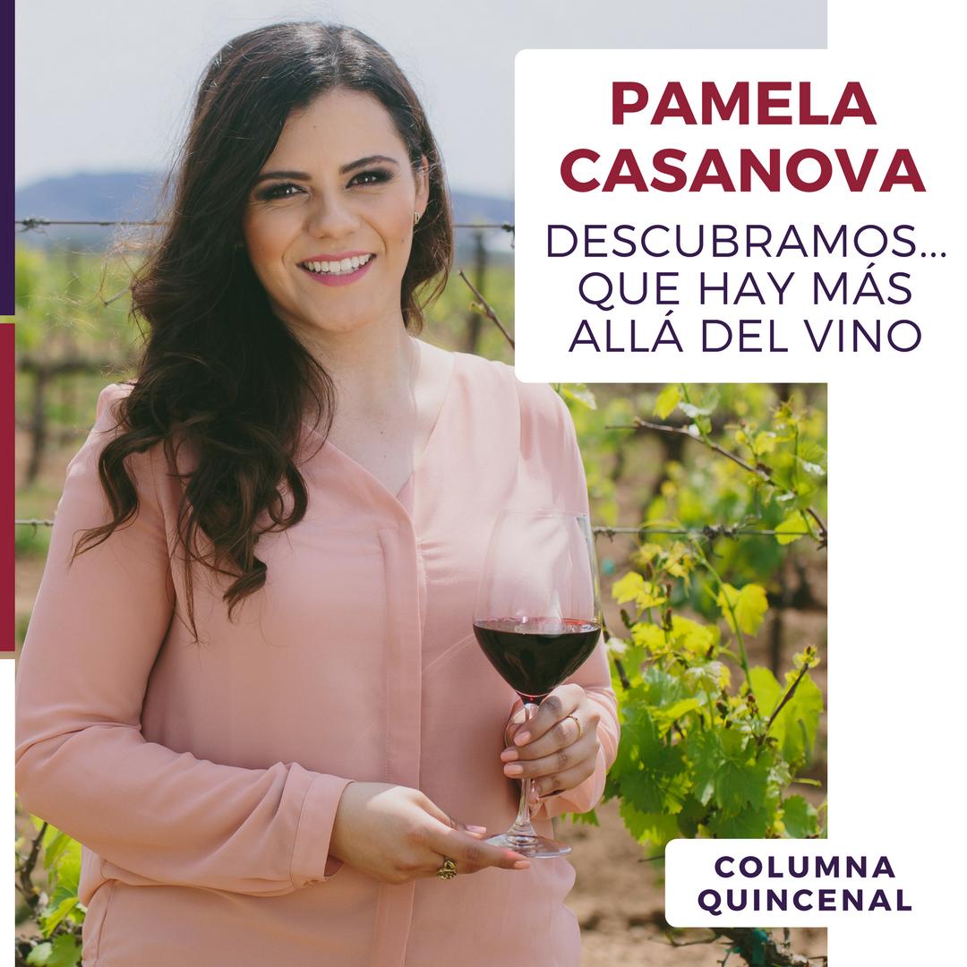 Pamela Casanova estrena columna