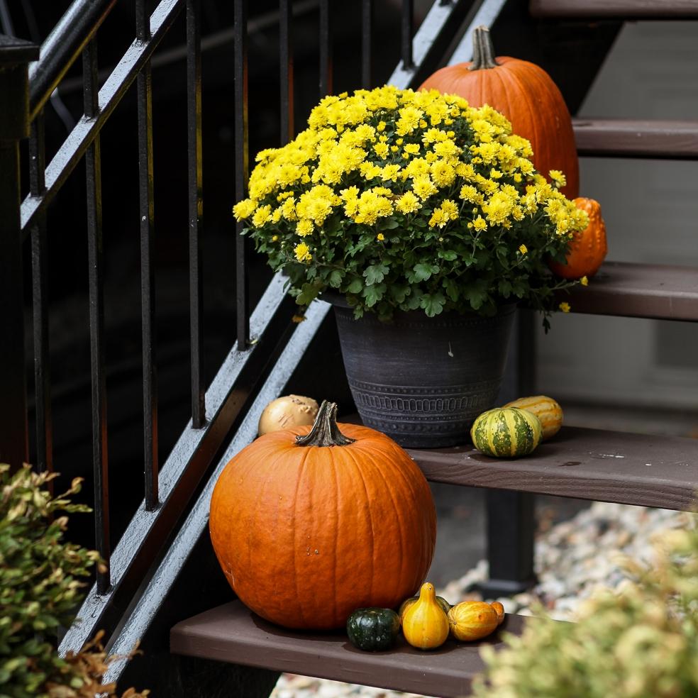 Lori October-23.jpg