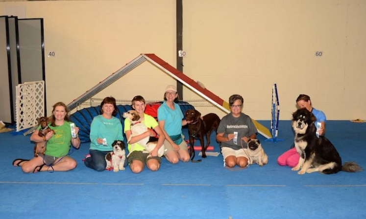 Group dog training classes in lexington, ky