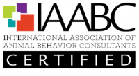 IAABC-certified-lexington-ky-dog-trainer