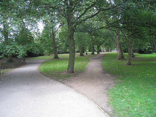 desire_path.jpg