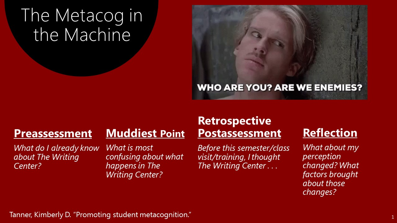 The Metacog in the Machine.jpg