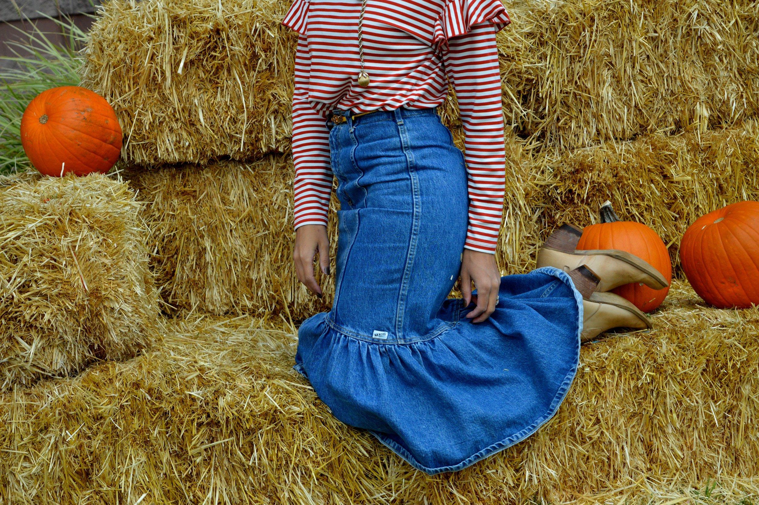 Pumpkin Patch Aurora 7.1.jpg