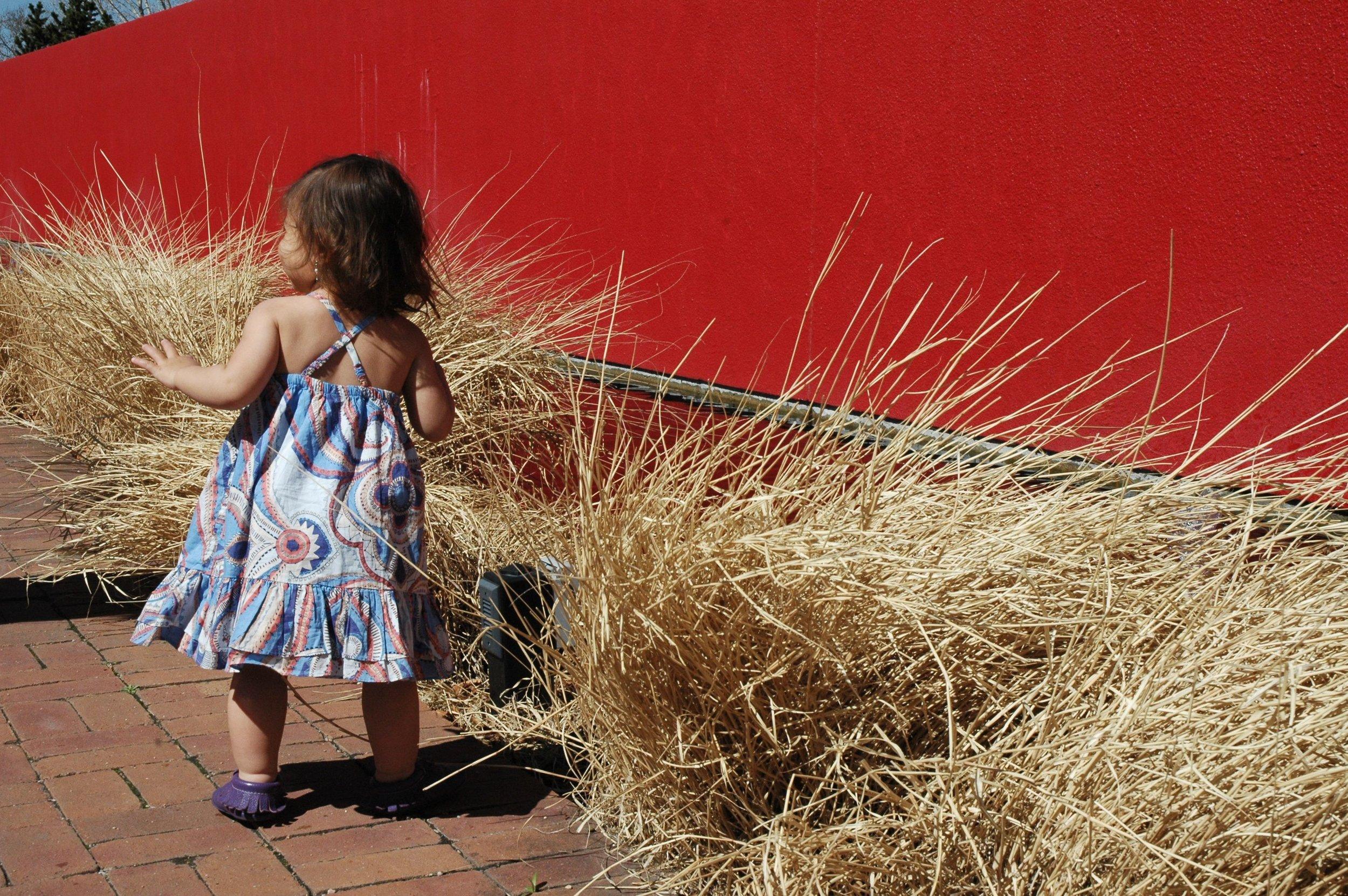 garden-remy-red-wall.jpg