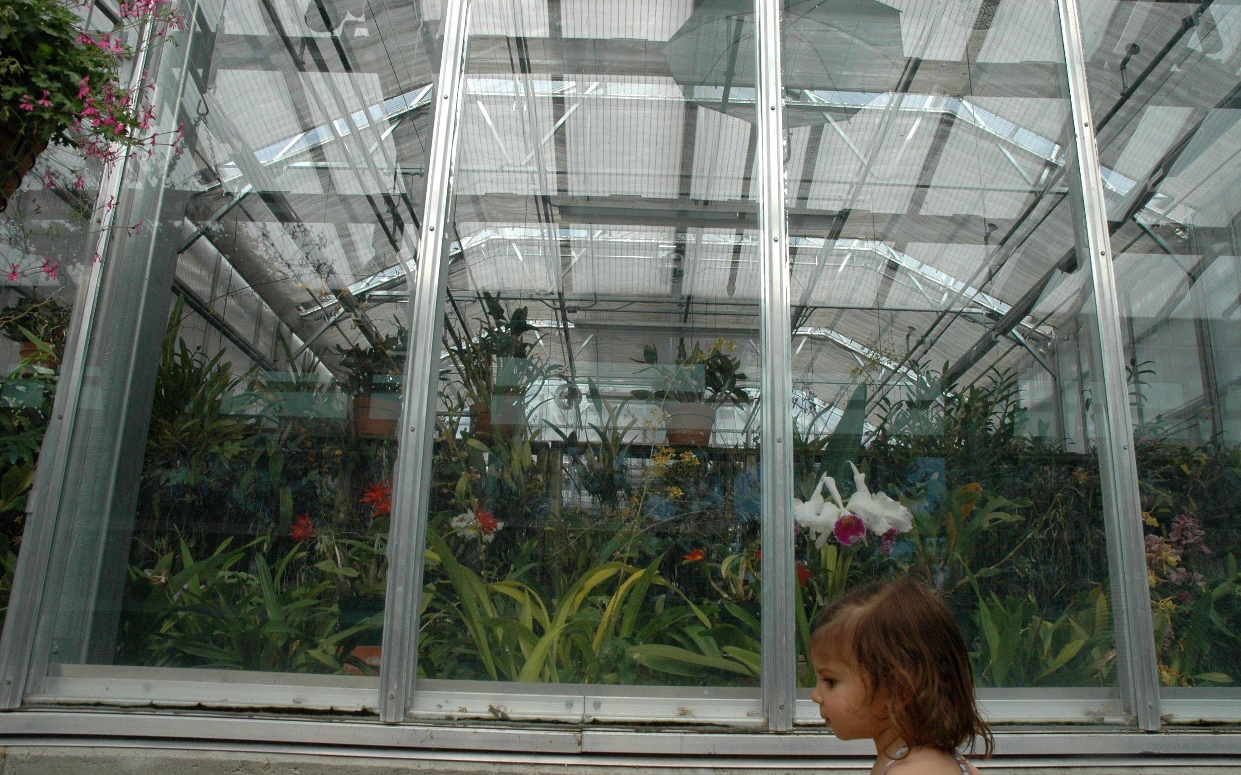 garden-umbrellas-2.jpg