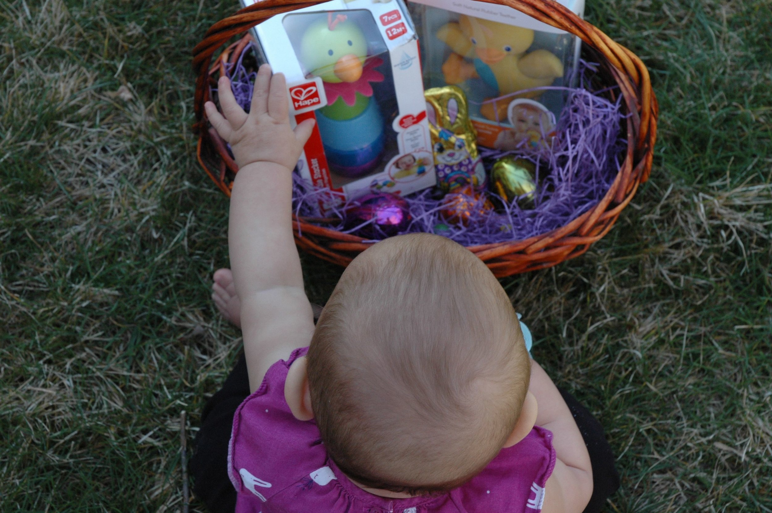 easter-search-4.jpg