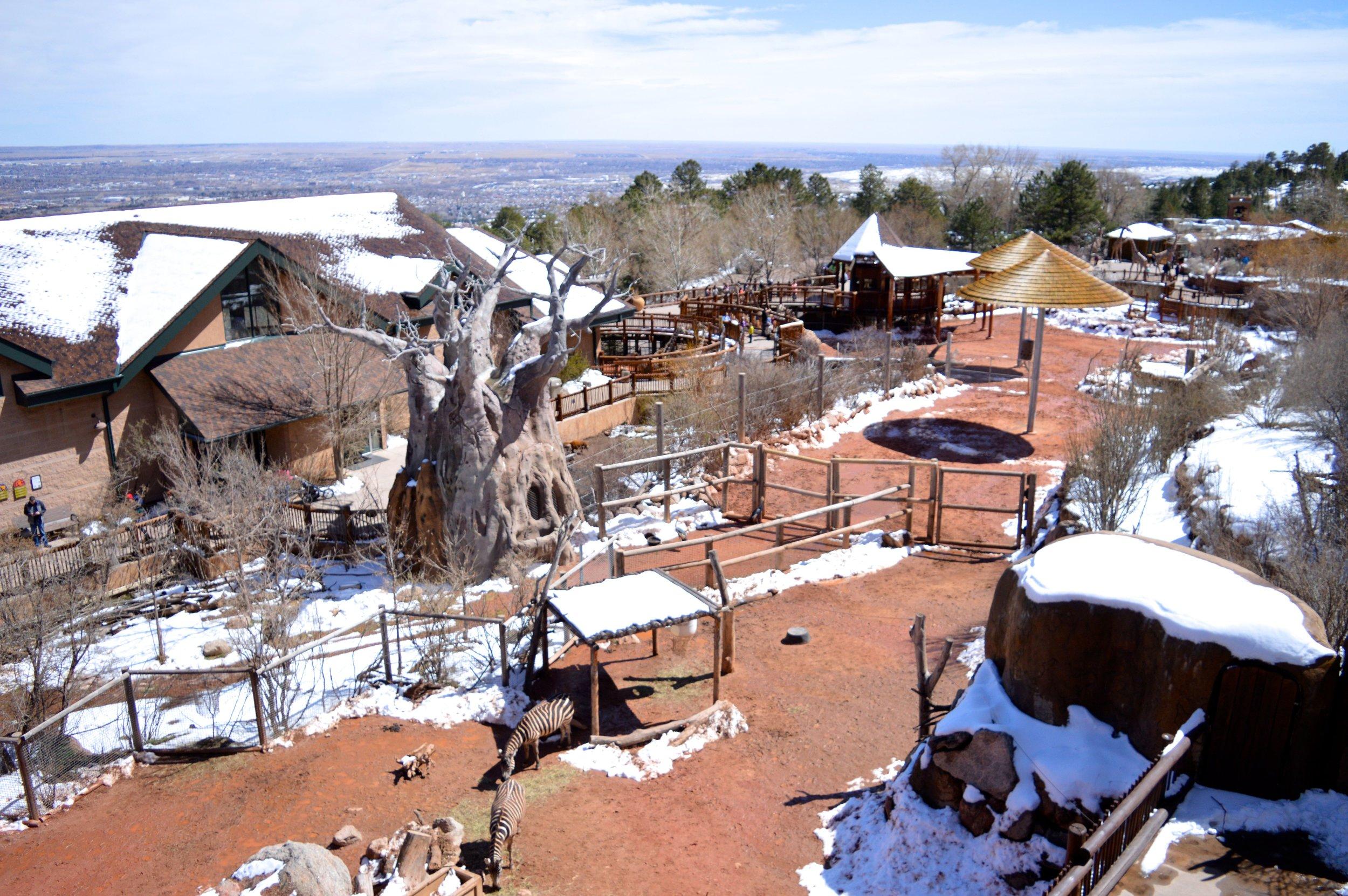 cheyenne-mountain-zoo-view.jpg