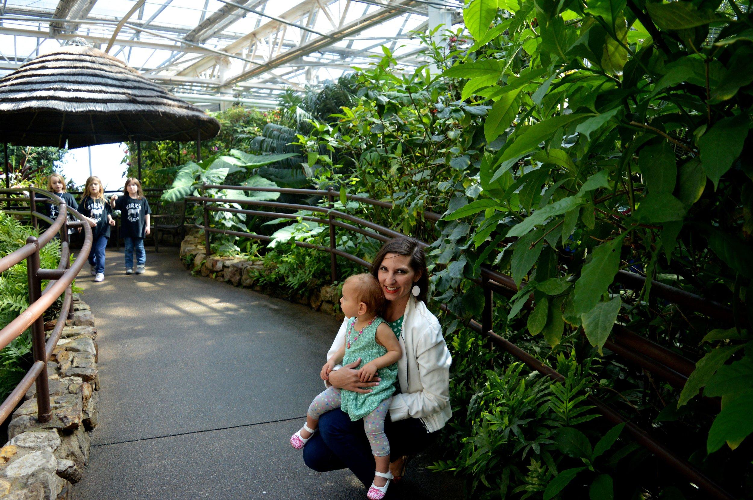 butterfly-pavilion-14.jpg