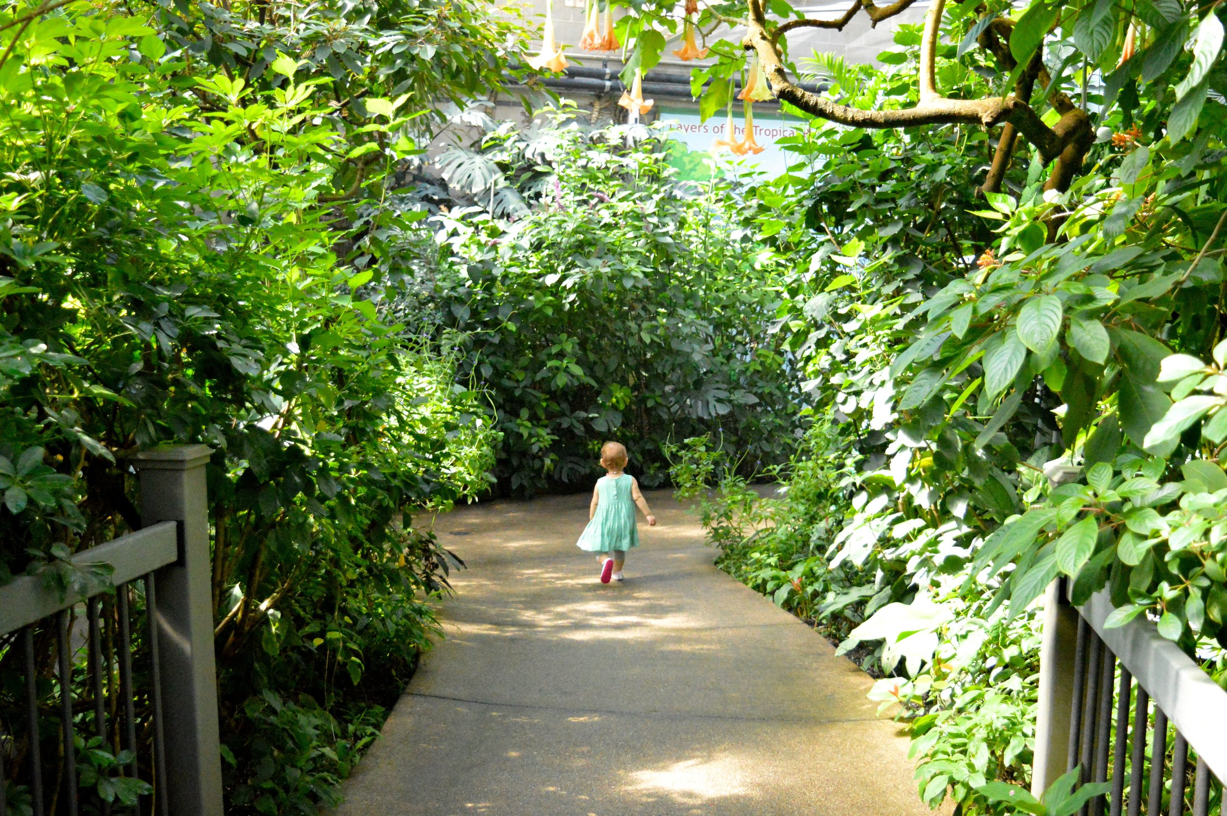 butterfly-pavilion-34.jpg