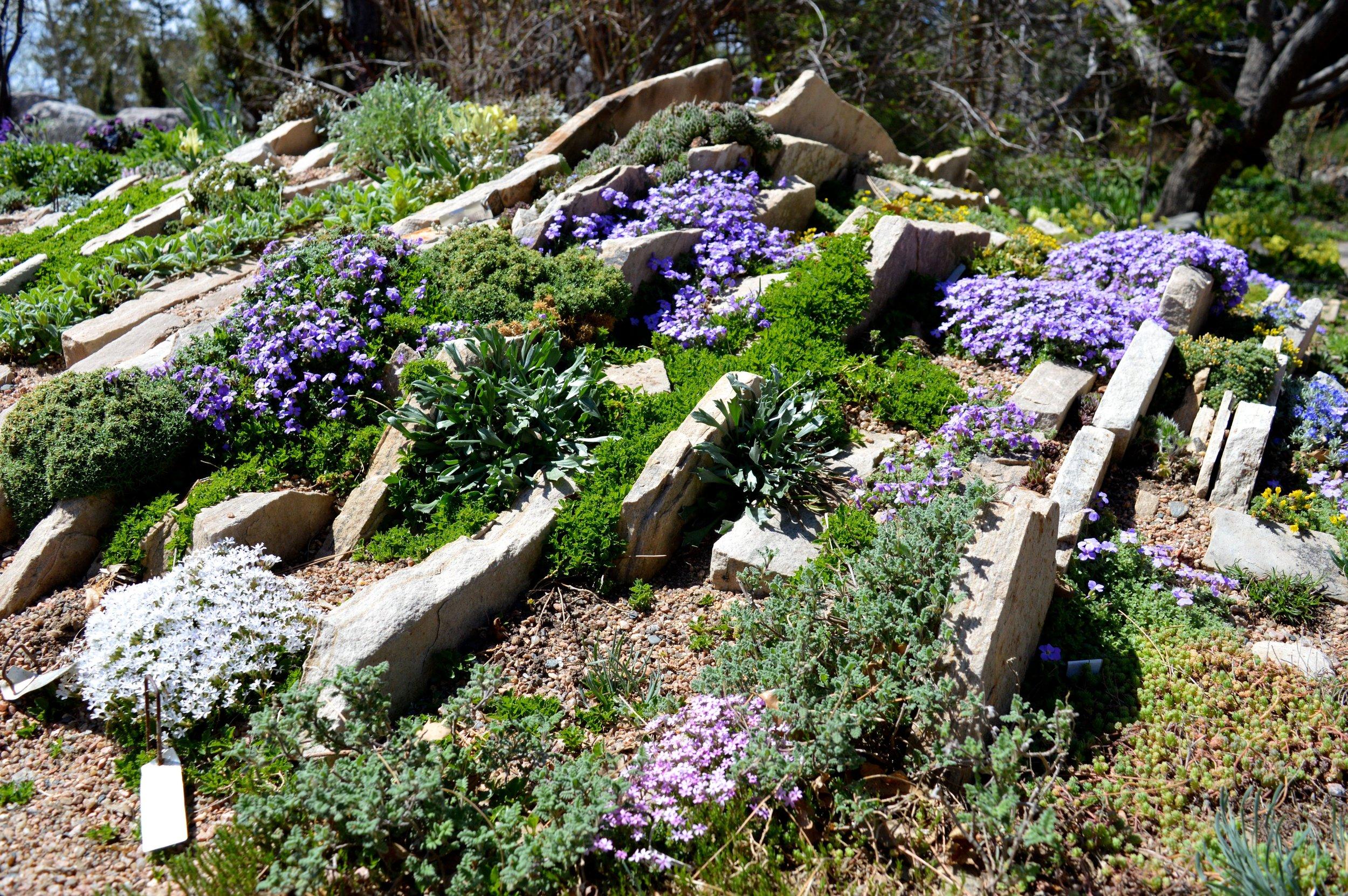 denver-botanic-gardens-April-13-18.jpg