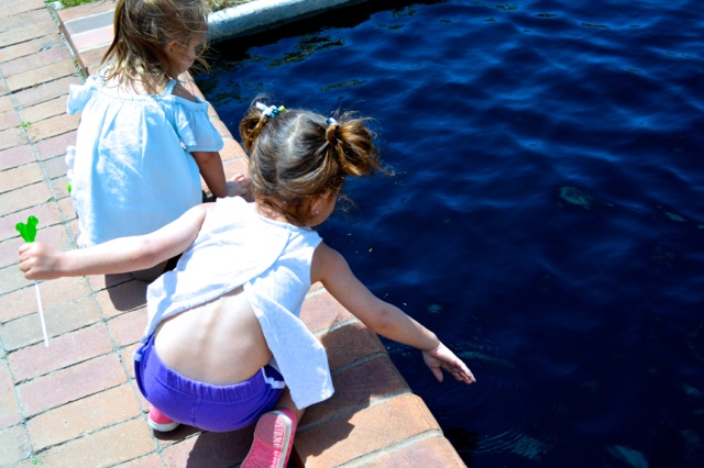 denver-botanical-gardens-childrens-area-25.jpg