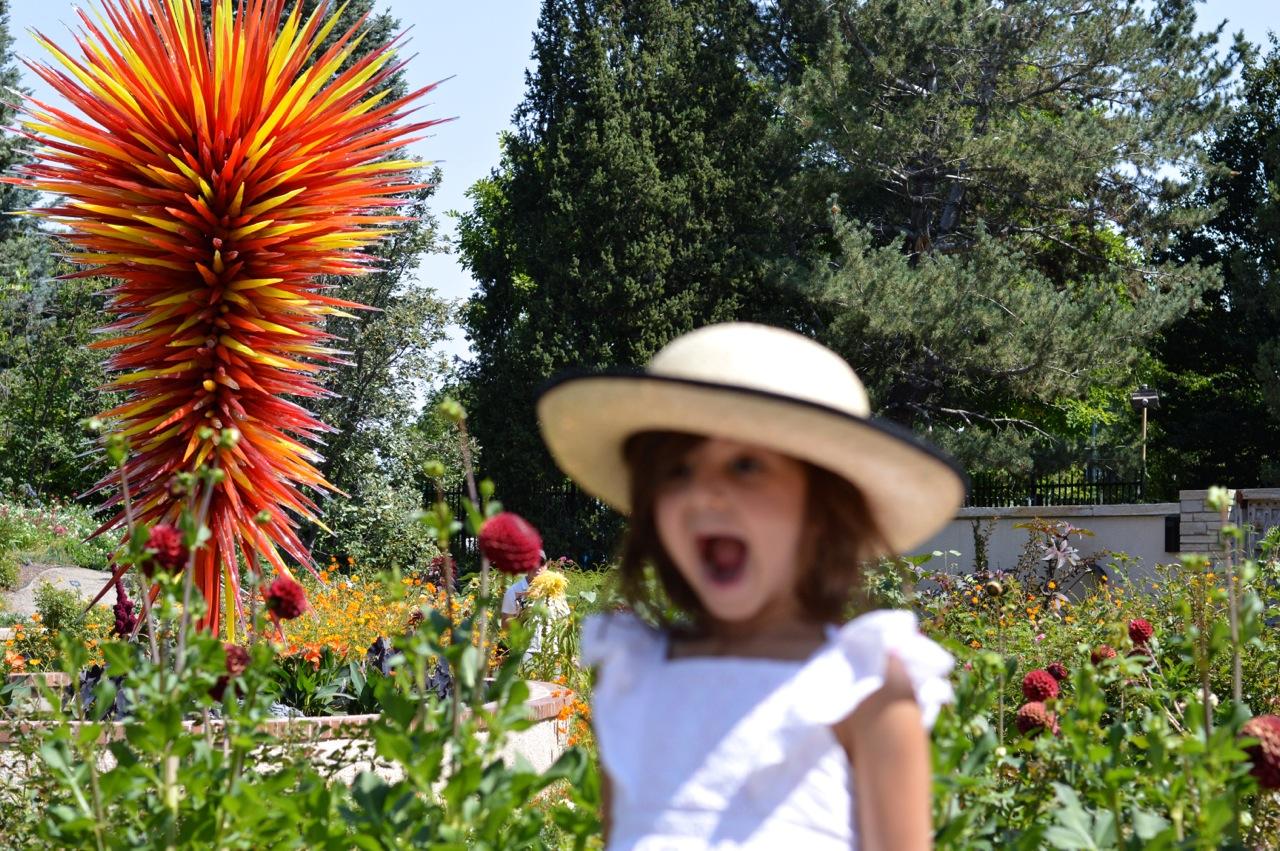 Denver-Botanic-Gardens-in-Summer-6.jpg