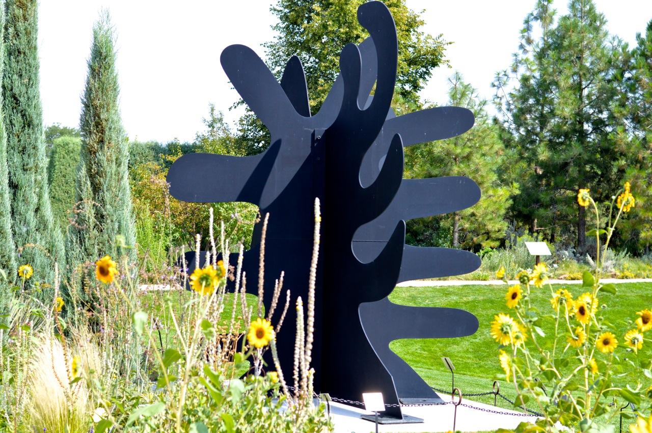 Denver-Botanic-Gardens-in-Summer-44.jpg