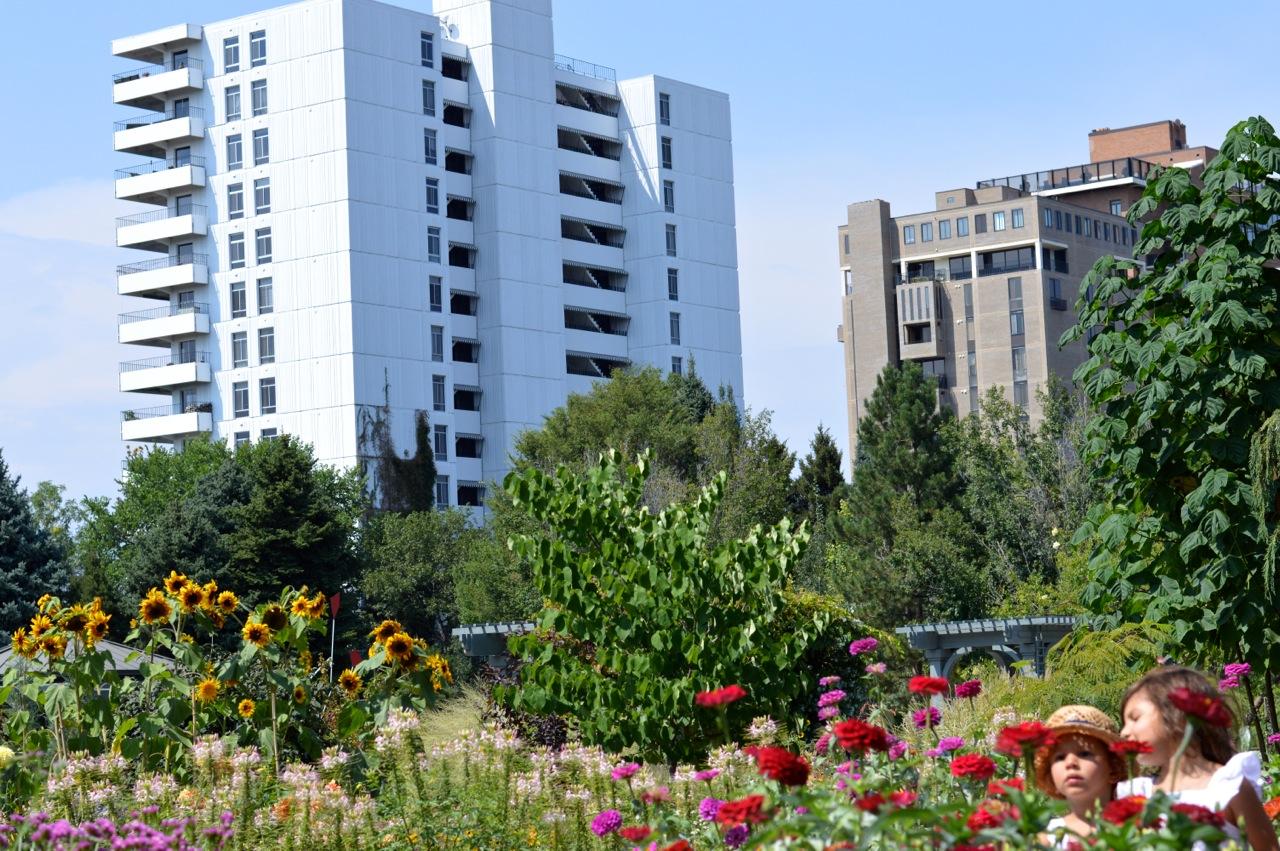Denver-Botanic-Gardens-in-Summer-46.jpg