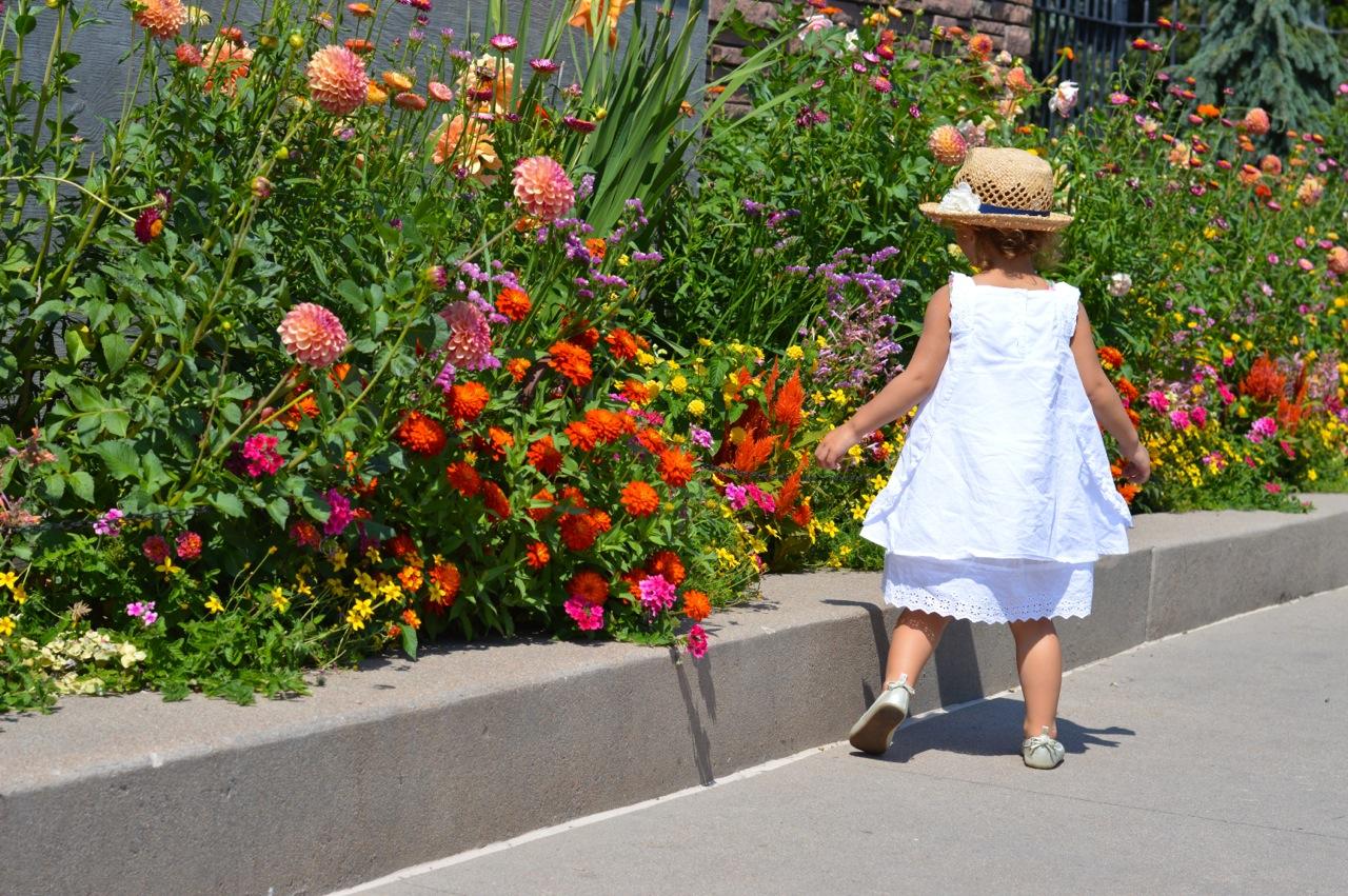 Denver-Botanic-Gardens-in-Summer-Cover-2.jpg