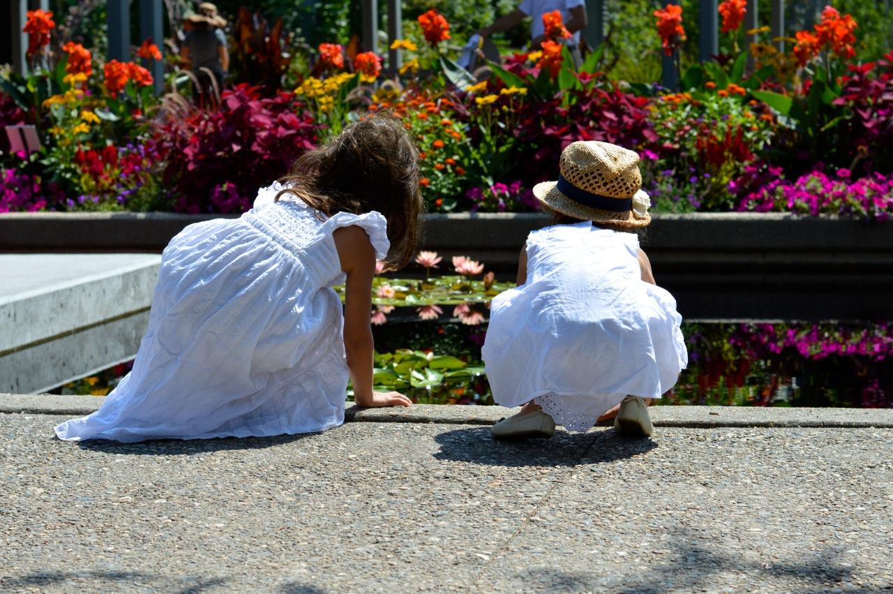 Denver-Botanic-Gardens-in-Summer-Cover-3.jpg