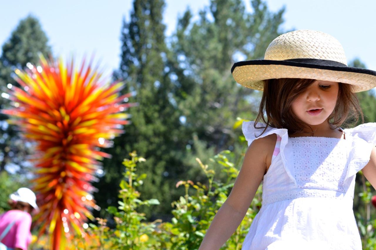 Denver-Botanic-Gardens-in-Summer-Cover.jpg