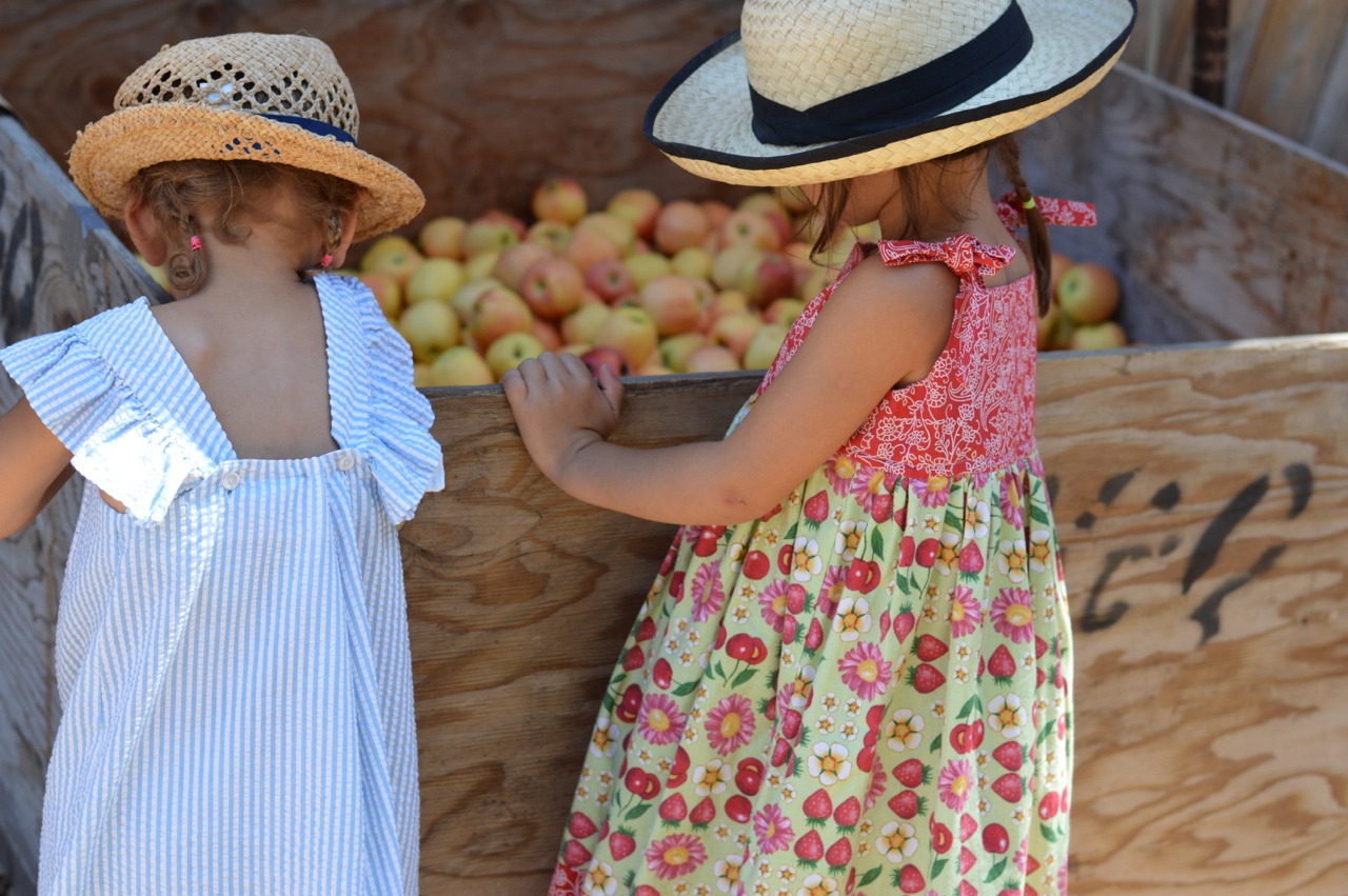 Fruit-Picking-at-Delicious-Orchards-8.jpg