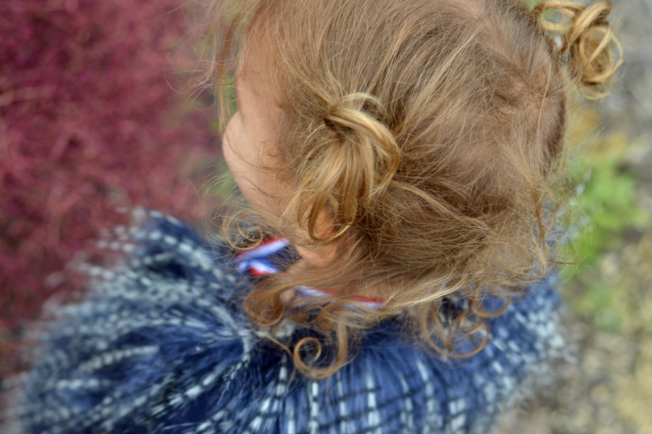 Nature-Walk-with-Toddlers-in-Colorado-4.jpg