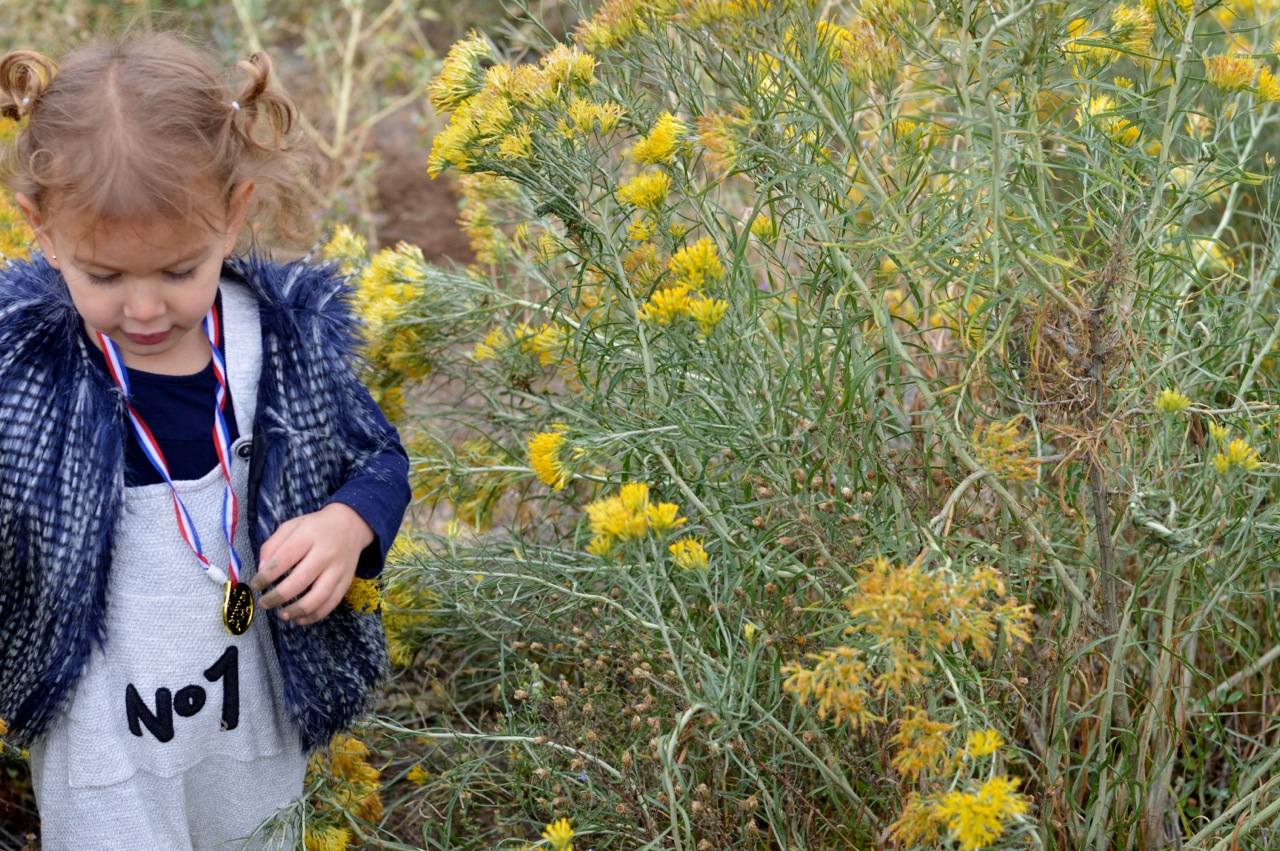 Nature-Walk-with-Toddlers-in-Colorado-23.jpg